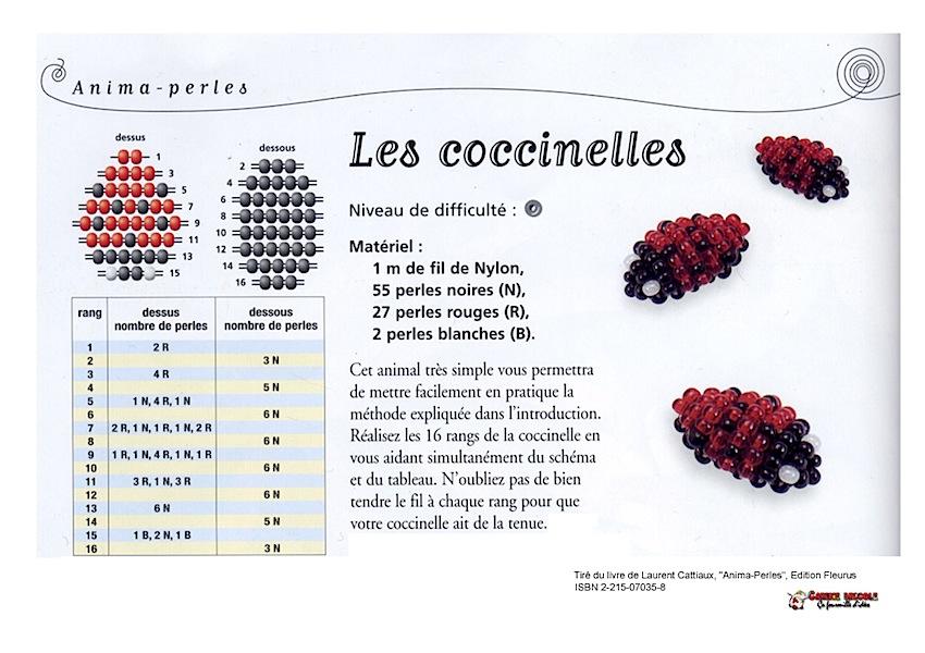 coccinelleperles2.jpg
